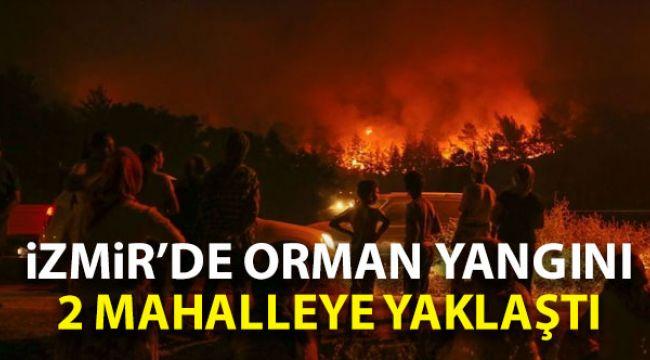 İzmir'de Orman yangını 2 mahalleye yaklaştı