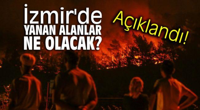 İzmir'de yanan alanlar ne olacak?