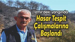 İzmir'deki yangında hasar tespit çalışmalarına başlandı
