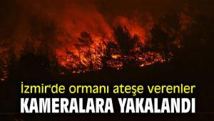 Ormanı ateşe verenler mobil kameralara yakalandı