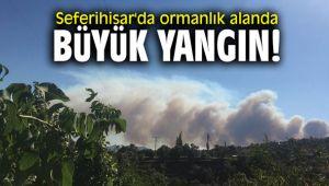 Seferihisar'da ormanlık alanda Büyük yangın