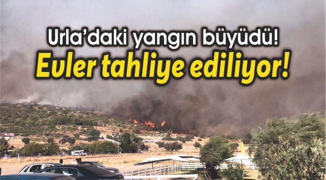 Urla'daki yangın büyüdü! Evler tahliye ediliyor!