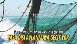 Ege Denizi'nde yaşa dışı avlanmaya geçit yok