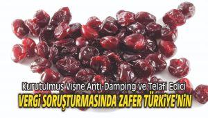 Kurutulmuş Vişne Anti-Damping ve Telafi Edici Vergi Soruşturmasında Zafer Türkiye'nin