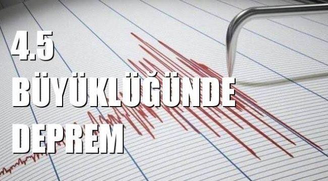 Ege Denizi'nde korkutan depremin