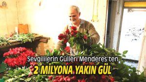 Sevgililerin Gülleri Menderes'ten