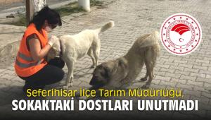 Seferihisar İlçe Tarım Müdürlüğü, Sokaktaki dostları unutmadı