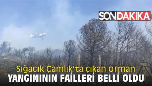 Sığacık Çamlık'ta çıkan orman yangınının failleri belli oldu