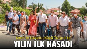 İzmir'in Lavanta Köyü Turgut'ta yılın ilk hasadı