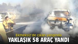 Ekmeksiz'de çıkan yangında yaklaşık 58 araç yandı