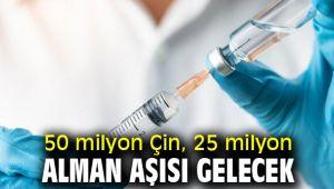 İki ülkeden 75 milyon aşı alınacak!