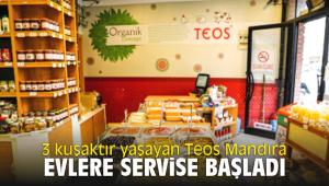 3 kuşaktır yaşayan Teos Mandıra evlere servise başladı
